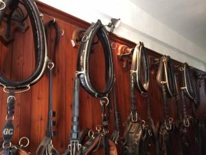 Pferdegeschirr aus dem 19. Jahrhundert im Pferdestall des Schloss Ussé in Frankreich. Foto: Elisabeth Kiss-Horvath.