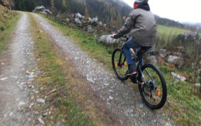 Mountainbike mit Strom